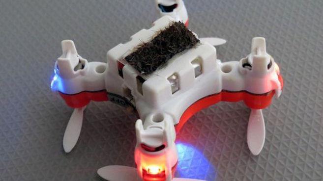 drone-abeja tendencias, tecnología, dron
